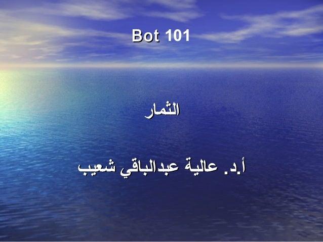 101BotBot الثمارالثمار شعيب عبدالباقي عالية .أ.دشعيب عبدالباقي عالية .أ.د