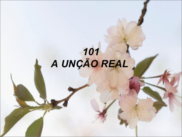 101 A UNÇÃO REAL