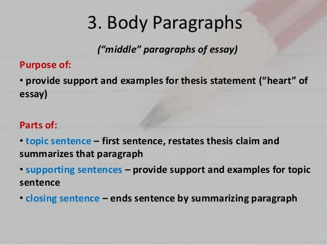 Parts of a body paragraph in an essay