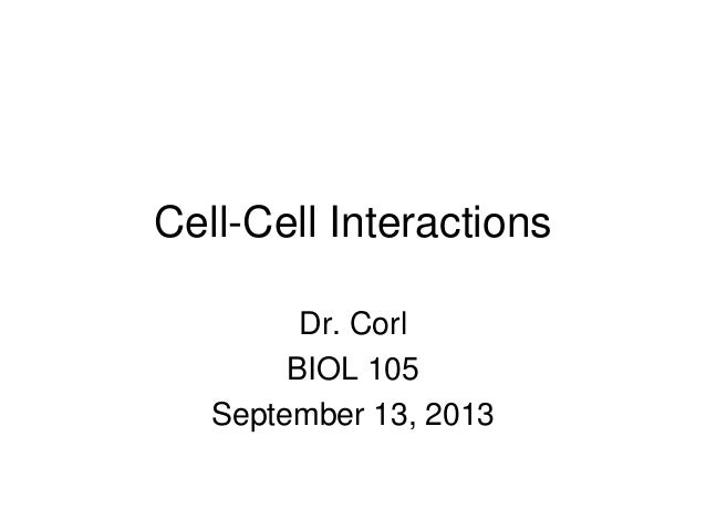 Cell-Cell Interactions Dr. Corl BIOL 105 September 13, 2013