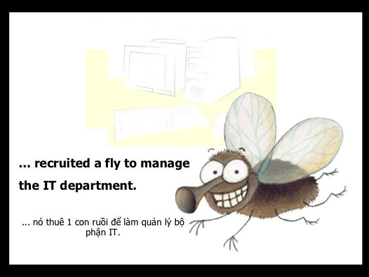... recruited a fly to managethe IT department.... nó thuê 1 con ruồi để làm quản lý bộ                phận IT.