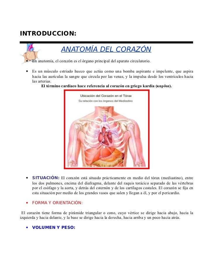 10195069 qc-enzimas-cardiacas