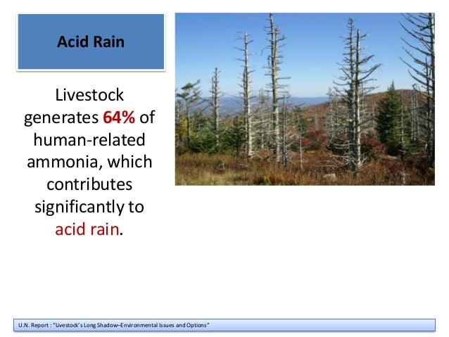 Acid rain speech