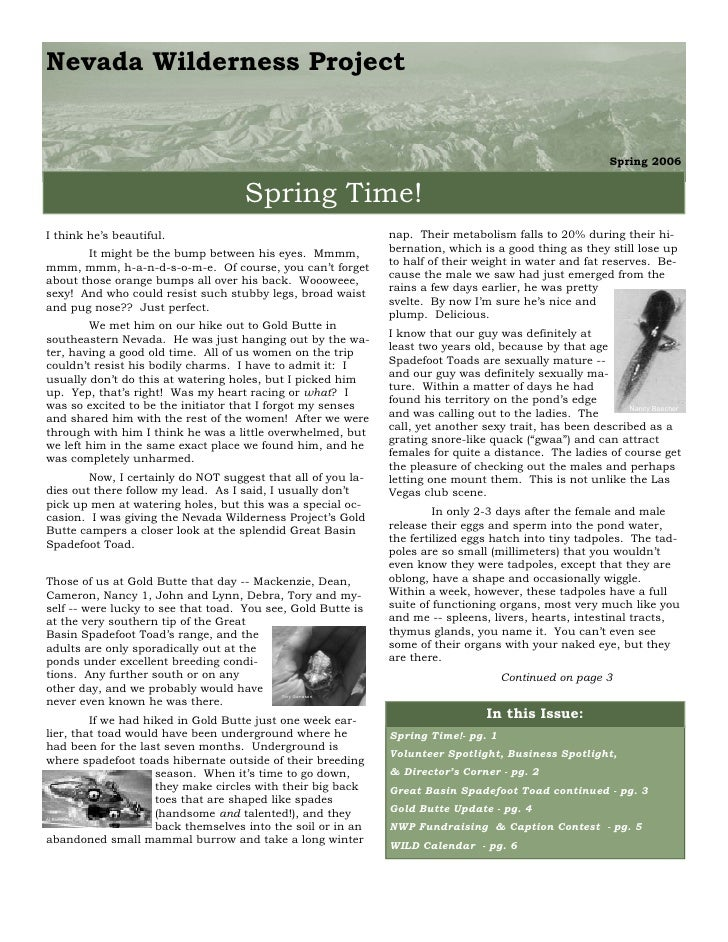 Spring 2006 Nevada Wilderness Project Newsletter
