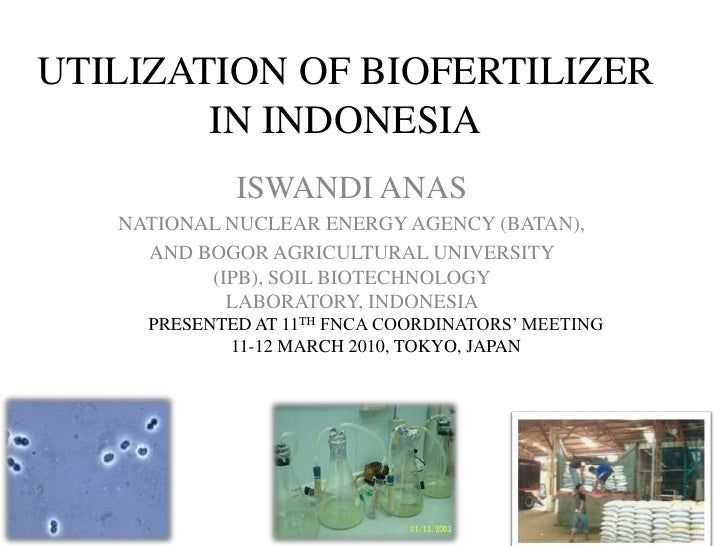 UTILIZATION OF BIOFERTILIZER IN INDONESIA<br />ISWANDI ANAS<br />NATIONAL NUCLEAR ENERGY AGENCY (BATAN),<br />AND BOGOR AG...