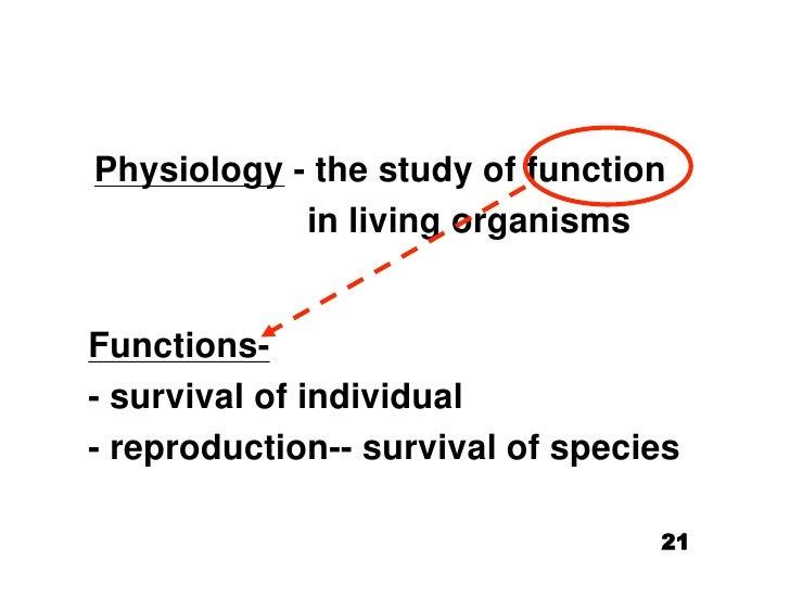 10.27.08: Introduction Homeostasis/Cardiovascular System