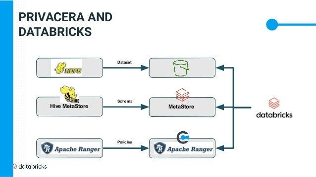 PRIVACERA AND DATABRICKS Hive MetaStore MetaStore Dataset Schema Policies