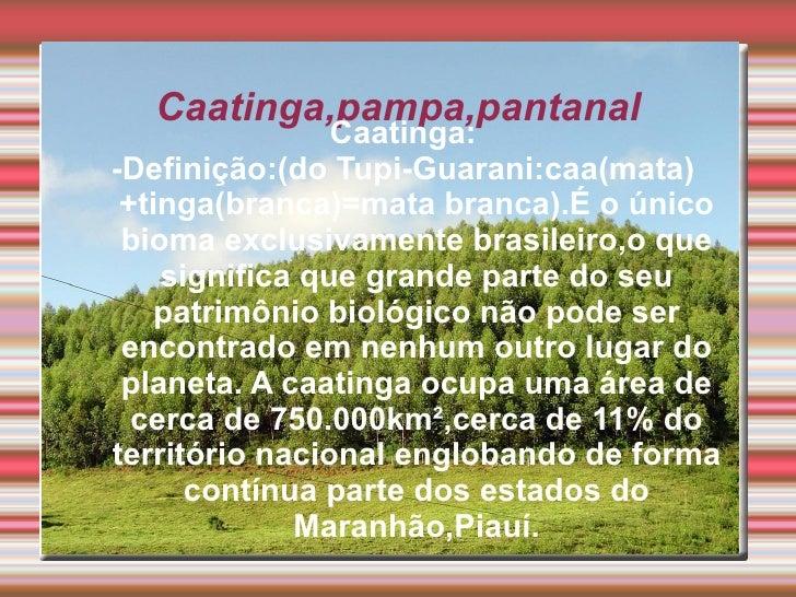 Caatinga,pampa,pantanal                Caatinga:-Definição:(do Tupi-Guarani:caa(mata) +tinga(branca)=mata branca).É o únic...