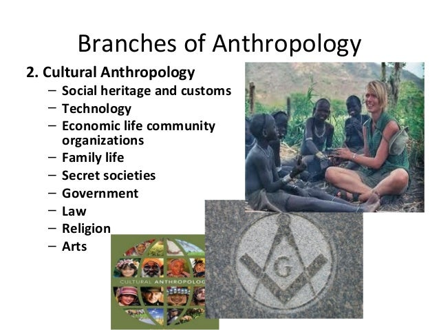 an analysis of assessing cultural anthropology Assessment plan for the undergraduate major in anthropology revised: cultural anthropology analysis of data and program assessment.