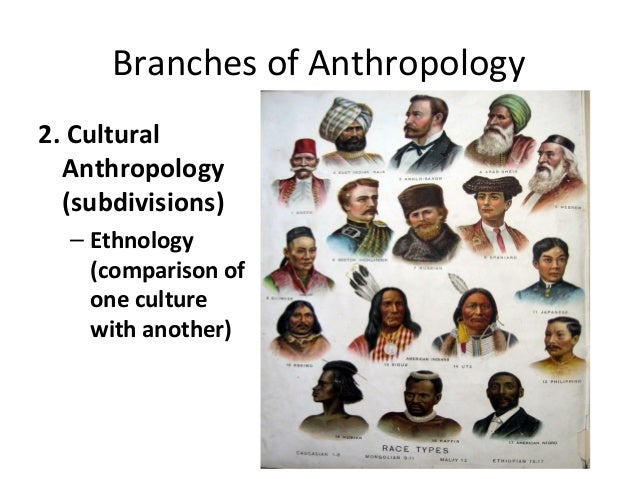 branches of anthropology The field of anthropology is the study of humanity, including human behavior,  human societies and the origins of humans the two main sub-fields of.