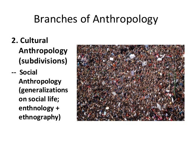 branches of sociology and their definition pdf