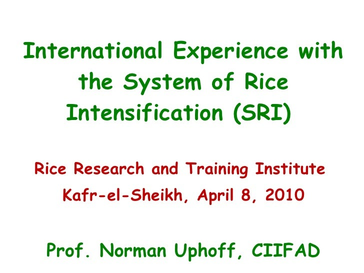 International Experience with the System of Rice Intensification (SRI)  Rice Research and Training Institute  Kafr-el-Shei...