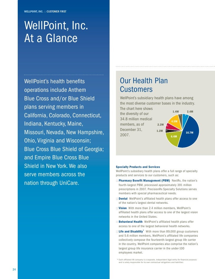 WellPoint 2007 summary annual report