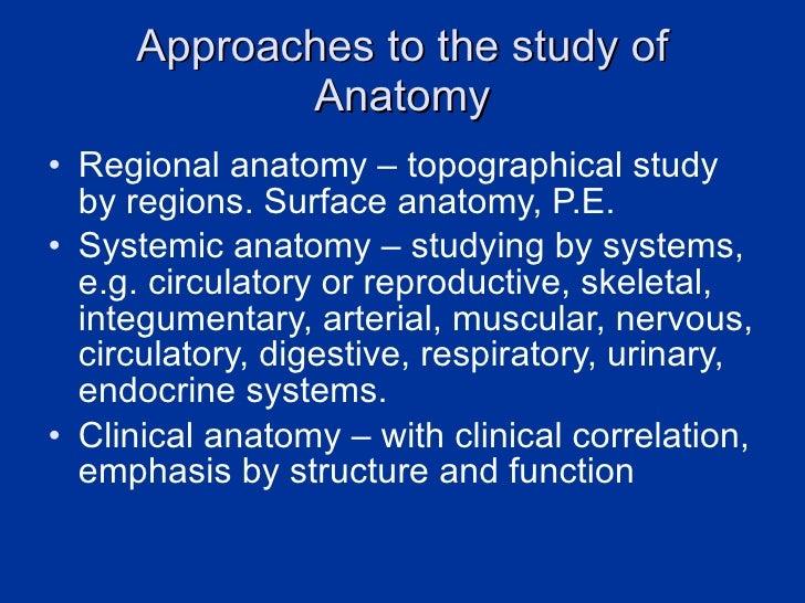 Human anatomy fandeluxe Images