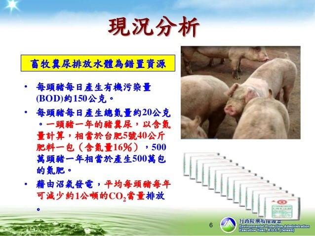 現況分析 • 每頭豬每日產生有機污染量 (BOD)約150公克。 • 每頭豬每日產生總氮量約20公克 。一頭豬一年的豬糞尿,以含氮 量計算,相當於台肥5號40公斤 肥料一包(含氮量16%),500 萬頭豬一年相當於產生500萬包 的氮肥。 • ...