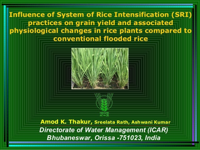 Amod K. Thakur, Sreelata Rath, Ashwani Kumar Influence of System of Rice Intensification (SRI) practices on grain yield an...