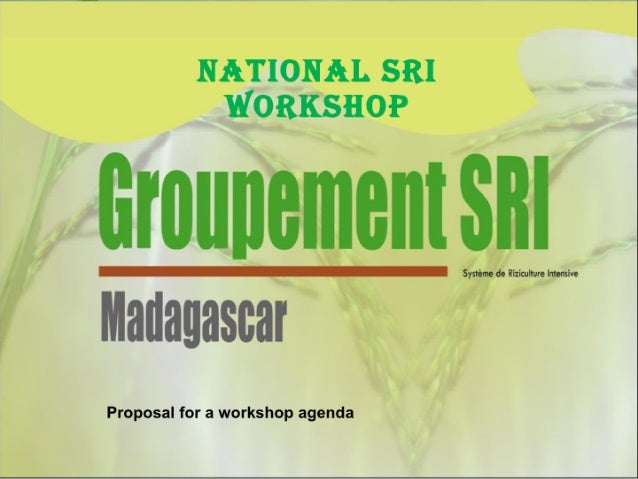 1045 Groupment SRI-Proposal for a Workshop Agenda