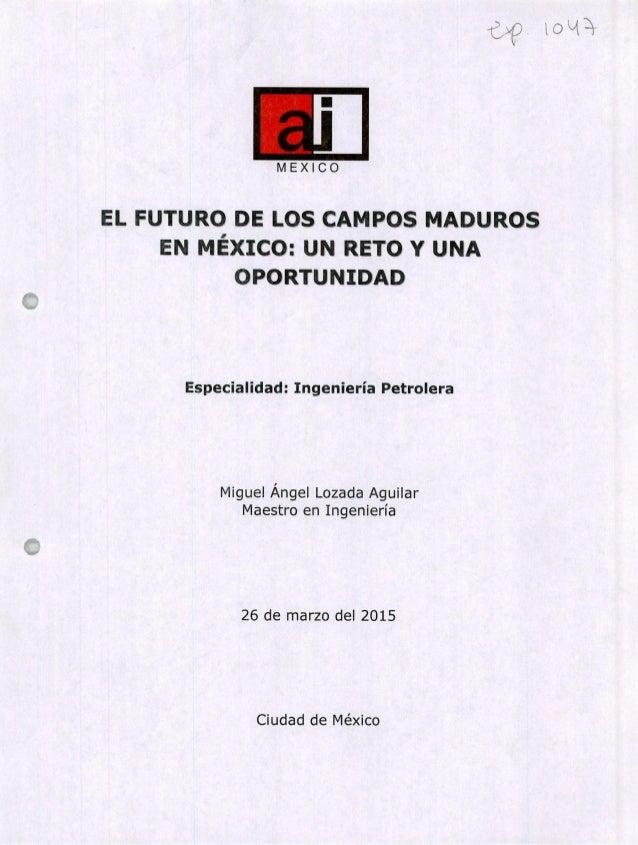 EL FUTURO DE LOS CAMPOS MADUROS EN MÉXICO: UN RETO Y UNA OPORTUNIDAD Especialidad: Ingeniería Petrolera Miguel Ángel Lozad...