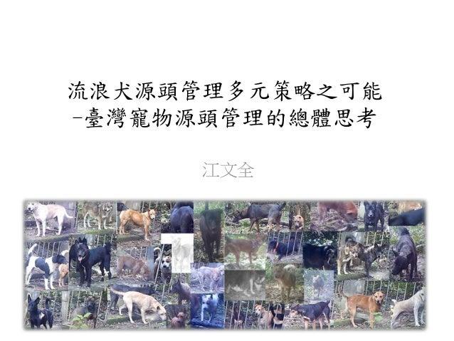 流浪犬源頭管理多元策略之可能 -臺灣寵物源頭管理的總體思考 江文全