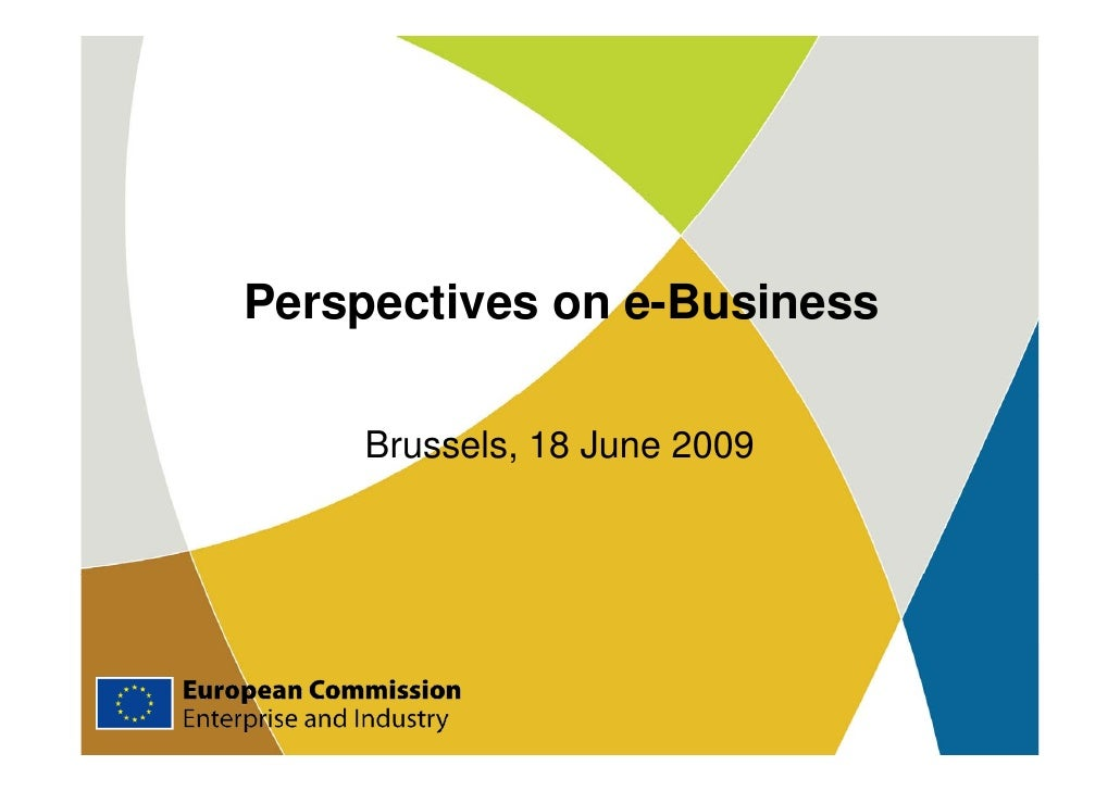 Perspectives on e-Business      Brussels, 18 June 2009