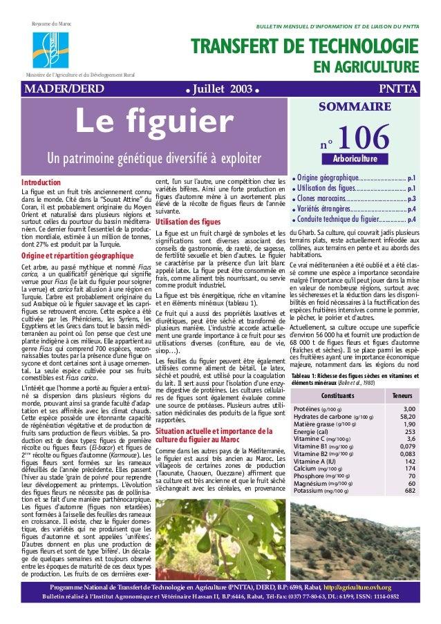 """Introduction La figue est un fruit très anciennement connu dans le monde. Cité dans la """"Sourat Attine"""" du Coran, il est pr..."""