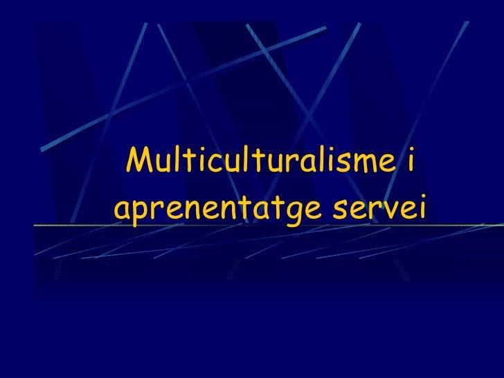 Multiculturalisme i aprenentatge servei