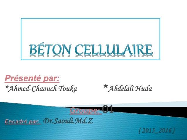  Plan de travail :  Introduction *Généralité *Un aperçu historique  Définition  Composition du béton cellulaire  Proc...