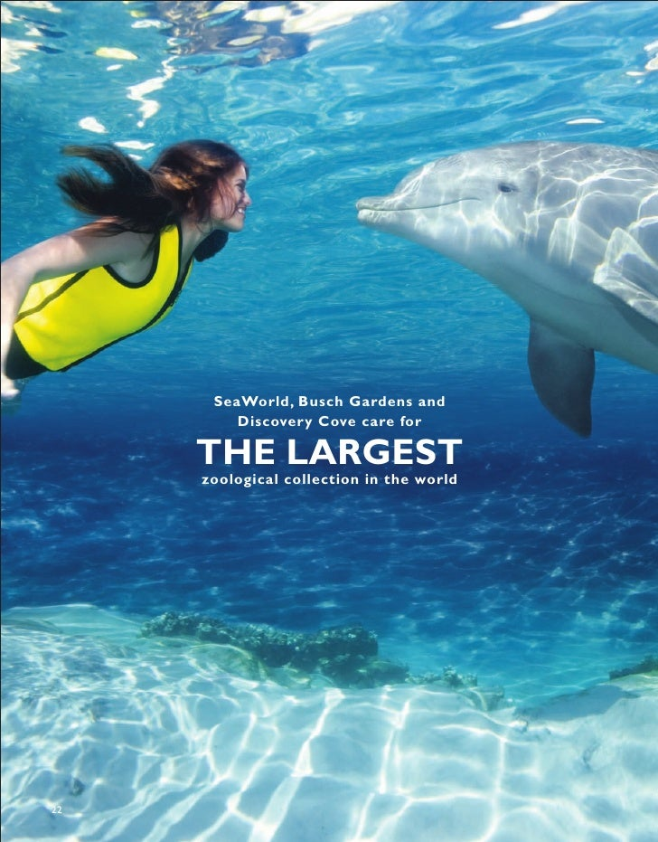 SeaWorld, Busch Gardens and          Discovery Cove care for       THE LARGEST      zoological collection in the world    ...