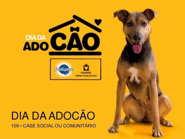 DIA DA ADOCÃO 109 • CASE SOCIAL OU COMUNITÁRIO