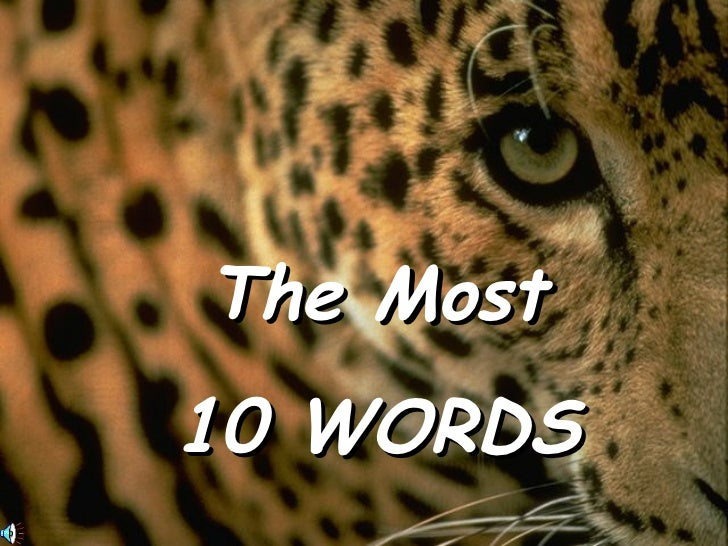The Most 10 WORDS