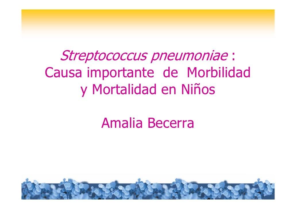Streptococcus pneumoniae :Causa importante de Morbilidad     y Mortalidad en Niños        Amalia Becerra