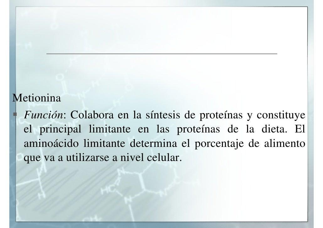 Funcion De La Metionina