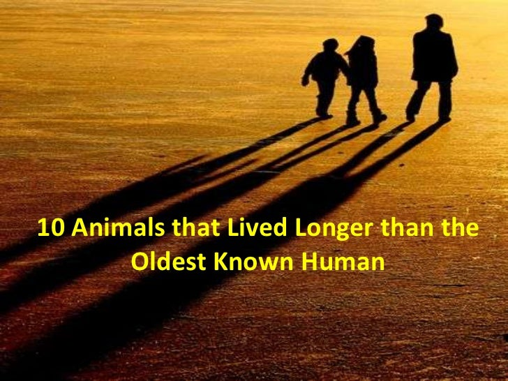 10 Animals that Lived Longer than the       Oldest Known Human