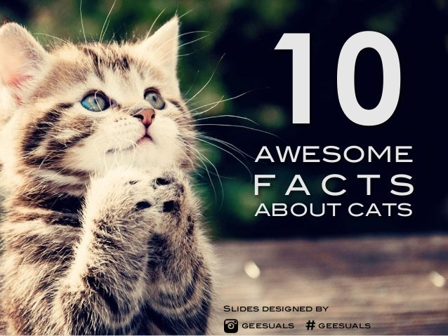 10  AWESOME  F A C T S  ABOUT CATS  Slides designed by  geesuals #geesuals