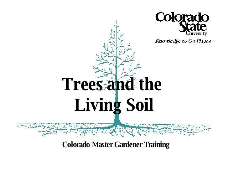 Colorado Master Gardener Training Trees and the  Living Soil