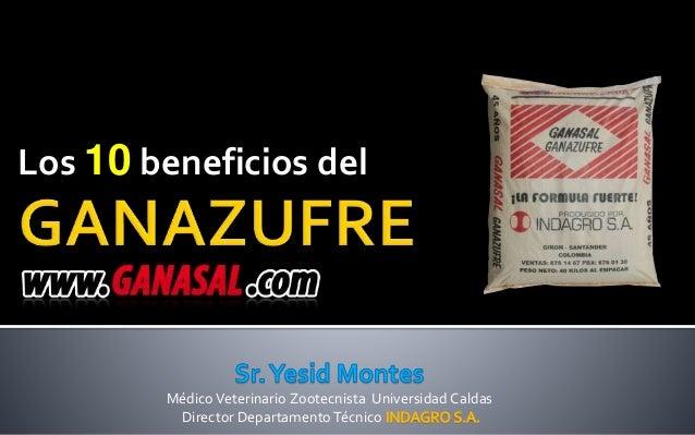MédicoVeterinario Zootecnista Universidad Caldas Director Departamento Técnico Los 10 beneficios del
