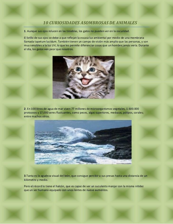10 CURIOSIDADES ASOMBROSAS DE ANIMALES1. Aunque sus ojos relucen en las tinieblas, los gatos no pueden ver en la oscuridad...