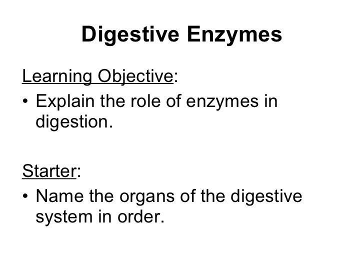 Digestive Enzymes <ul><li>Learning Objective : </li></ul><ul><li>Explain the role of enzymes in digestion. </li></ul><ul><...