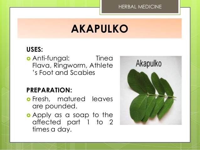 Bears berry: medicinal properties and application in folk medicine