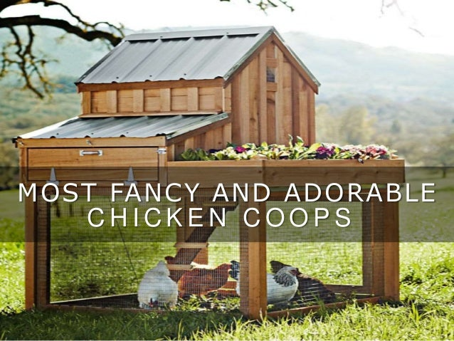 10 fancy and adorable chicken coops for Fancy chicken coops
