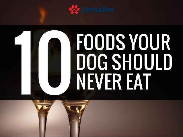 The Doctors  Foods You Should Never Eat