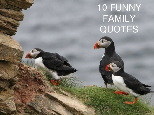 10 Funny Family Quotes
