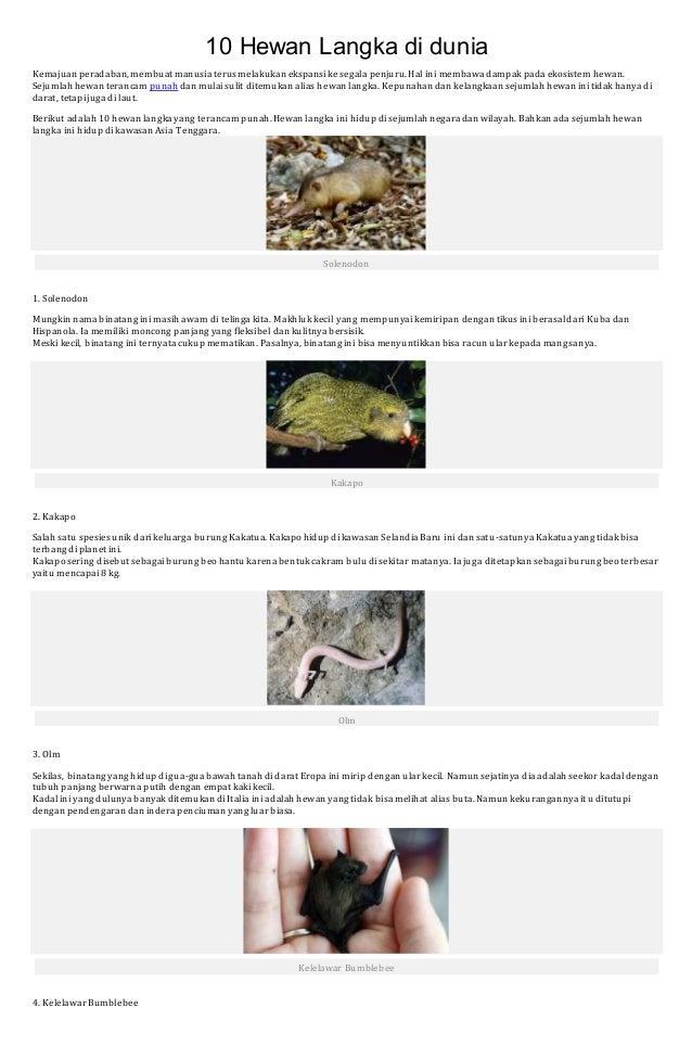 60 Koleksi Gambar Hewan Yang Hidup Di Asia Tenggara HD Terbaru