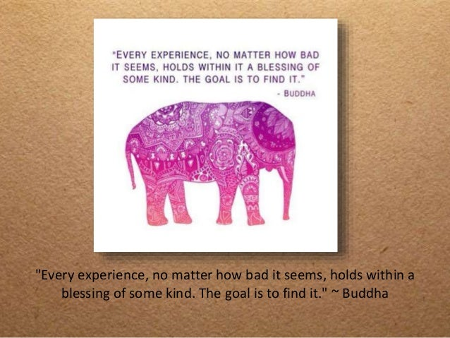 Elephant Quotes New 48 inspirational elephant quotes you need right now