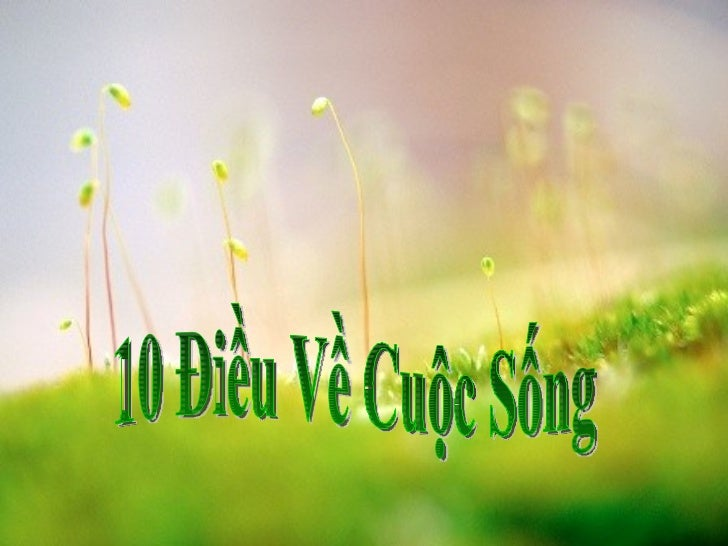 10 Điều Về Cuộc Sống
