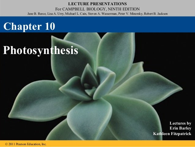 LECTURE PRESENTATIONS For CAMPBELL BIOLOGY, NINTH EDITION Jane B. Reece, Lisa A. Urry, Michael L. Cain, Steven A. Wasserma...