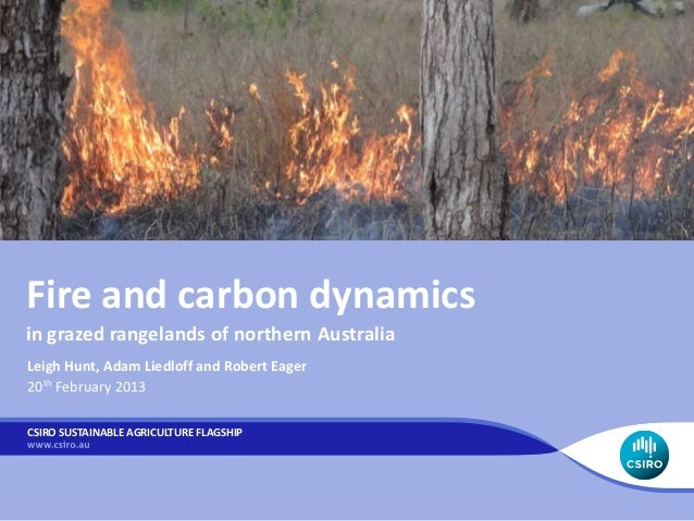 Fire and carbon dynamicsin grazed rangelands of northern AustraliaLeigh Hunt, Adam Liedloff and Robert Eager20th February ...