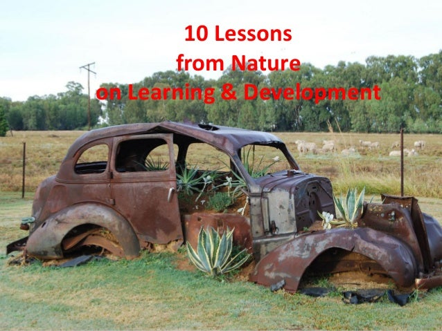 10 Lessons from Nature on Learning & Development