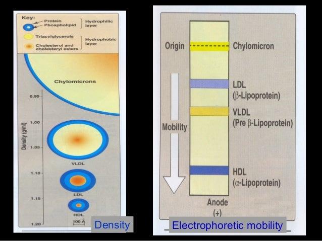 Electrophoretic mobilityDensity