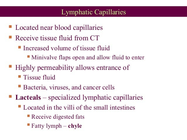 Lymphatic Capillaries  Located near blood capillaries  Receive tissue fluid from CT  Increased volume of tissue fluid ...